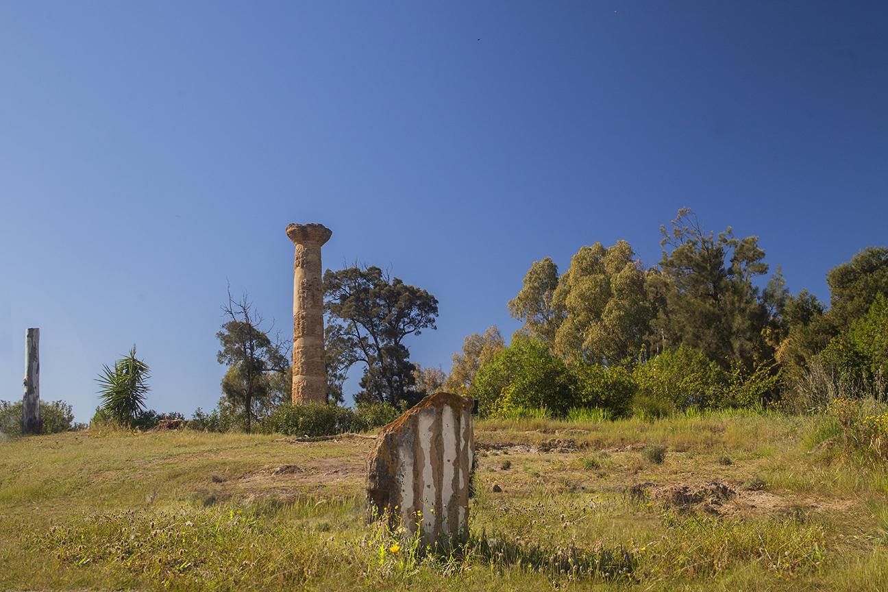 La colonna dorica | Gela le radici del Futuro