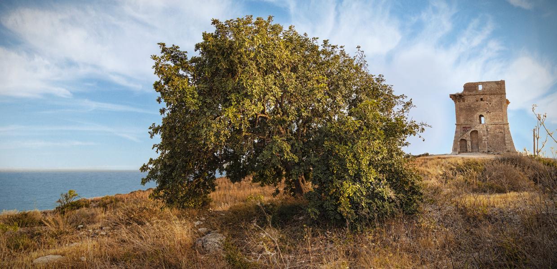 La Torre di Manfria | Gela le radici del futuro
