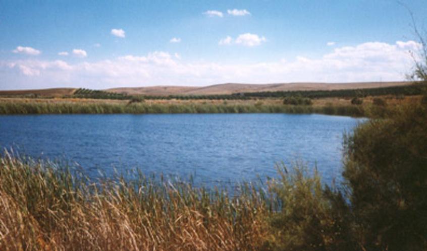 Lago Biviere Gela